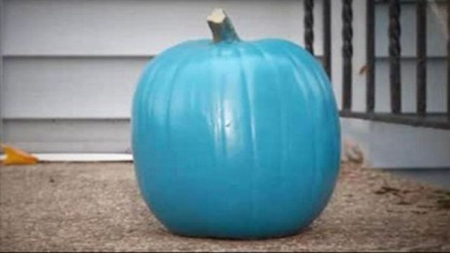 The Teal Pumpkin Project launches in the CSRA